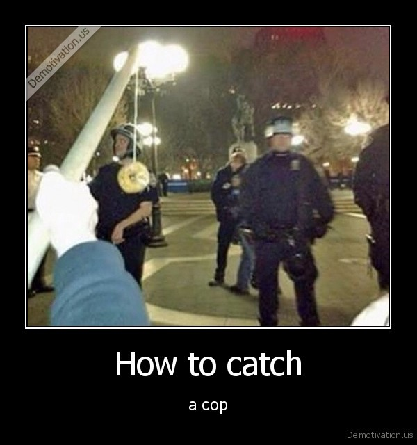 How to catch