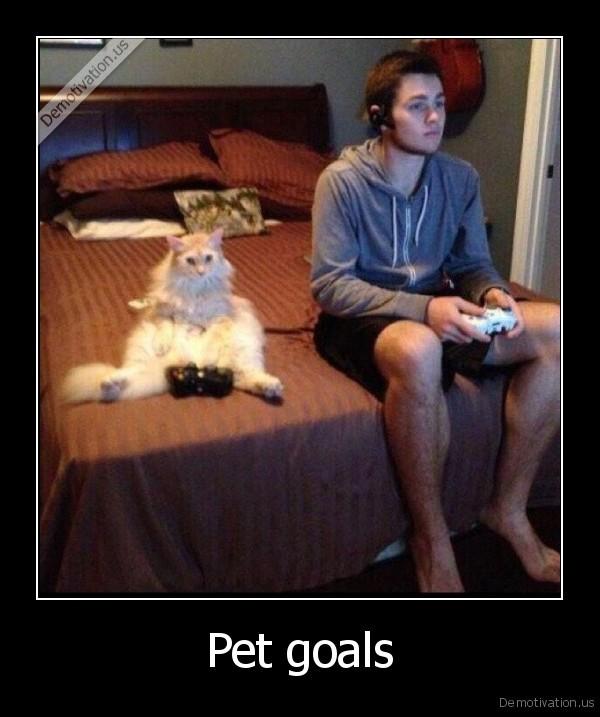 Pet goals