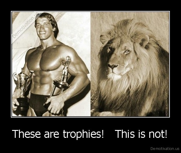 These are trophies!   This is not!