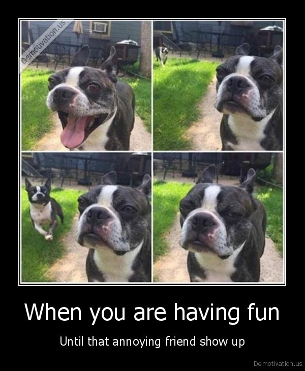 When you are having fun