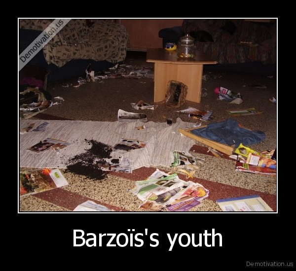 dog,barzo,crash,youth,breakdown