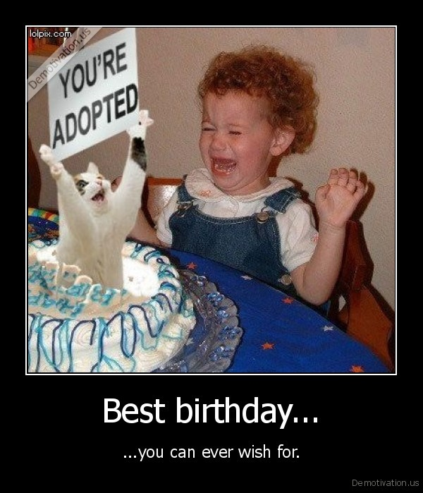 birthday,funny,wish,cat,adopted,child