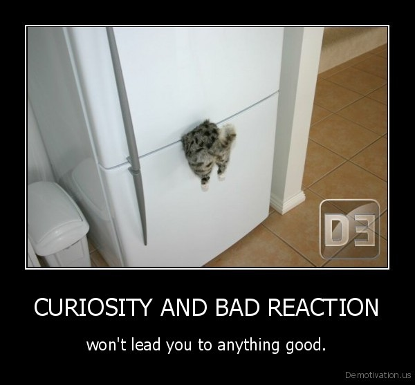 CURIOSITY AND BAD REACTION