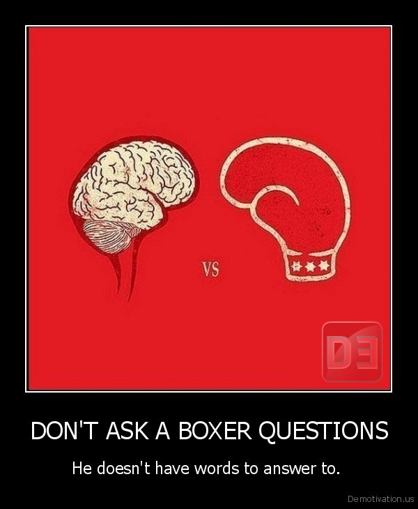 DON'T ASK A BOXER QUESTIONS