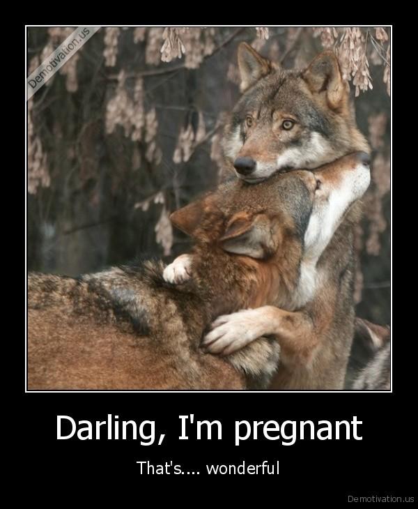 Darling Im Pregnant Demotivationus