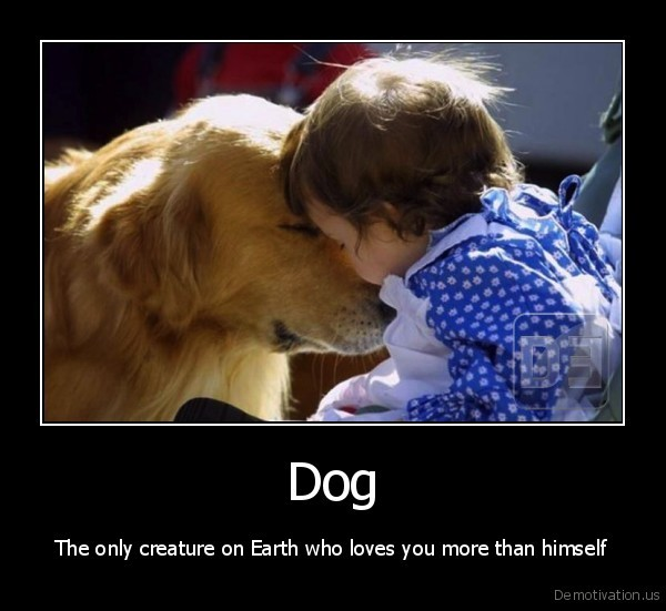 Dog - The only creature on Earth who loves you more than himself