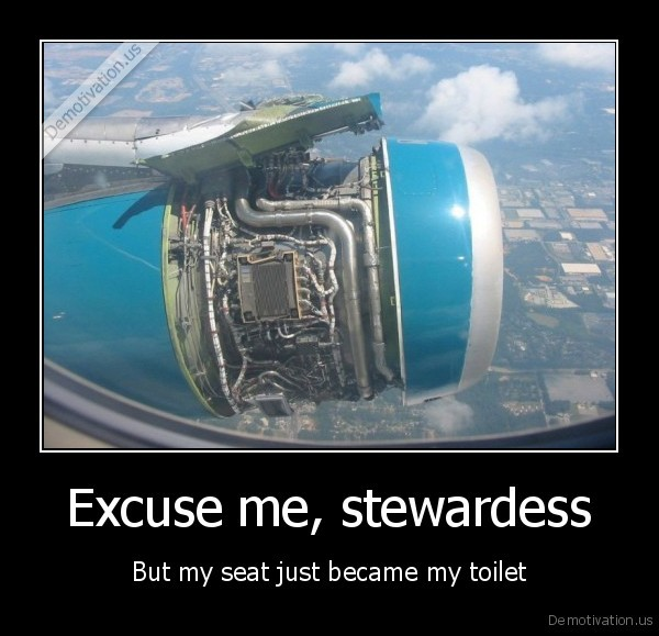 Excuse me, stewardess - But my seat just became my toilet