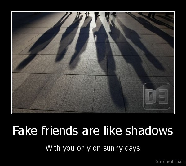 Fake friends are like shadows