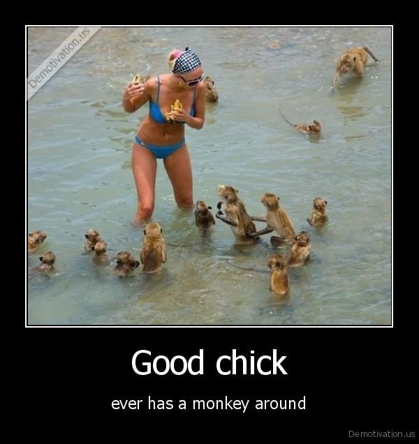 Monkey Demotivation Us