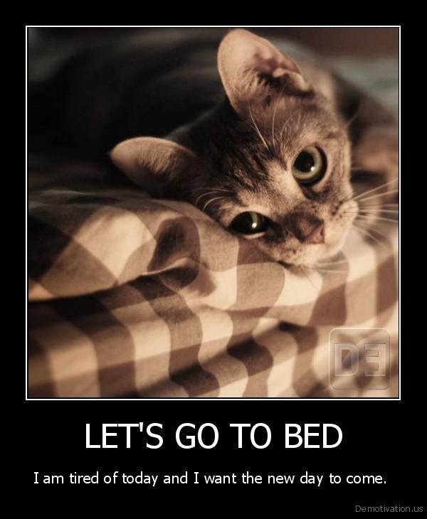 [Image: demotivation.us_LETS-GO-TO-BED-I-am-tire...828547.jpg]