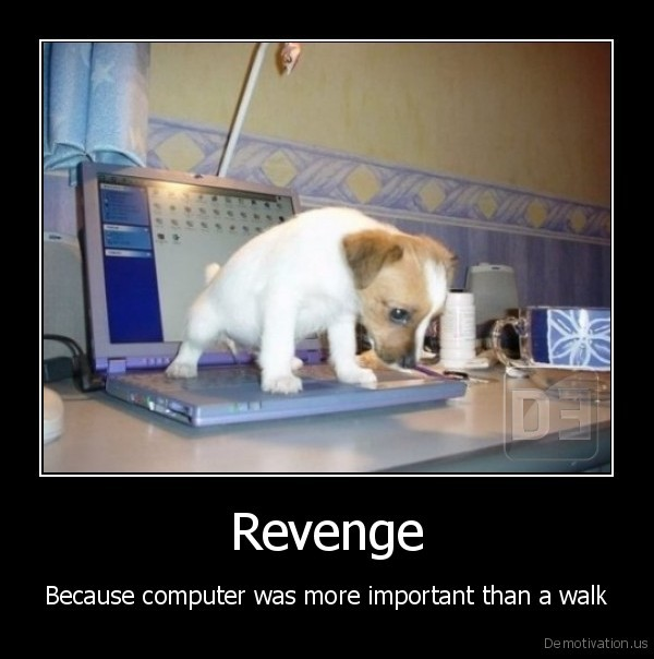 dog,computer,pc,walk,walking,revenge,laptop