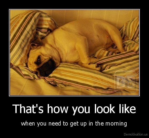 That's how you look like - when you need to get up in the morning