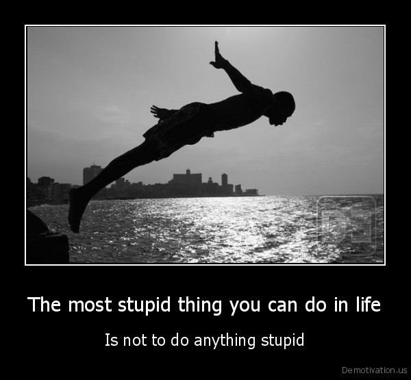 The most stupid thing you can do in life - Is not to do anything stupid
