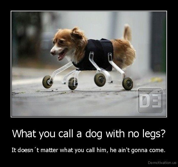 Dogs With No Legs