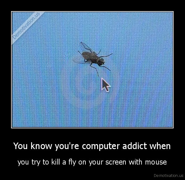 fly,mouse,screen,addict