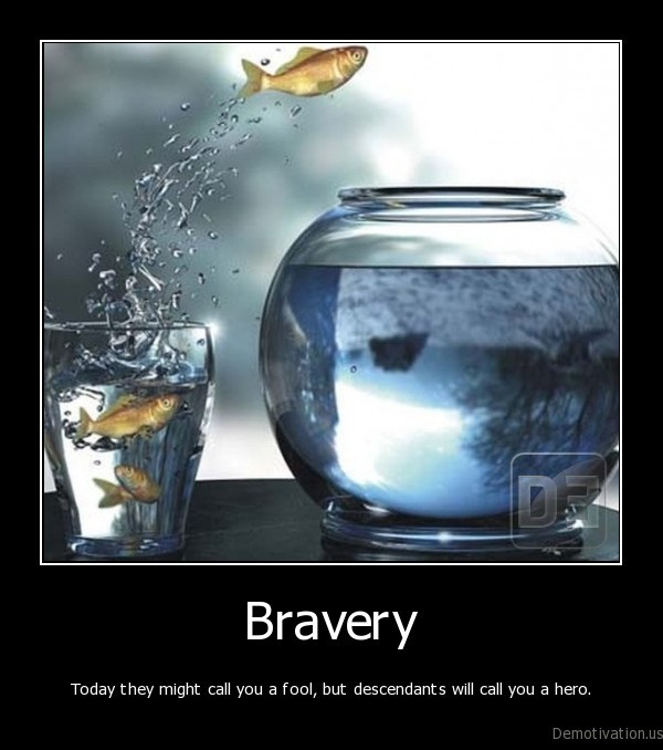 fish,aquarium,gold, fish,courage