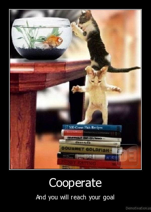 cat,kitten,golden, fish,aquarium,cooperate,get, fish,reach, goal