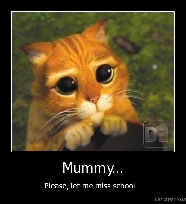 absent, from, school,bunk, off, school,mother,ask,cat,kitten