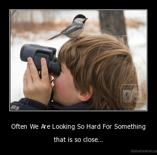 boy,kid,bird,binoculars
