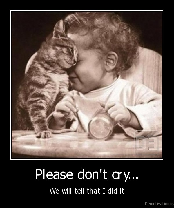 love,little, baby,children, and, pets,kitty,kitten,baby