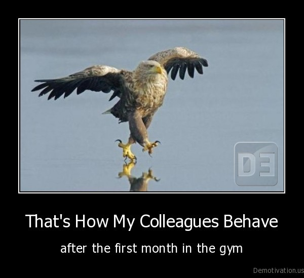 eagle,funny, eagle,sports,gym,exercise