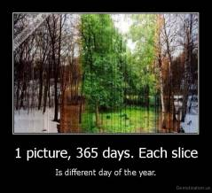 1 picture, 365 days. Each slice - Is different day of the year.