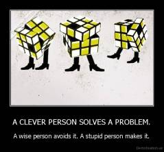 A CLEVER PERSON SOLVES A PROBLEM. - A wise person avoids it. A stupid person makes it.