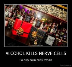 ALCOHOL KILLS NERVE CELLS - So only calm ones remain