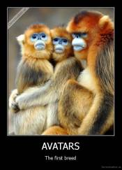 AVATARS - The first breed