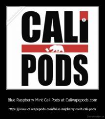 Blue Raspberry Mint Cali Pods at Calivapepods.com - https://www.calivapepods.com/blue-raspberry-mint-cali-pods