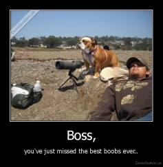 Boss, - you've just missed the best boobs ever..