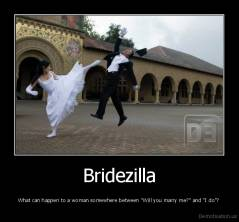 "Bridezilla - What can happen to a woman somewhere between ""Will you marry me?"" and ""I do""?"