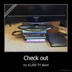 Check out - my $1,000 TV stand