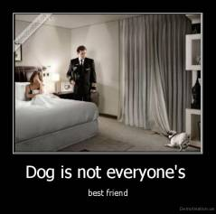 Dog is not everyone's  - best friend