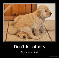 Don't let others - Sit on your head