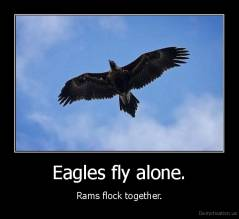 Eagles fly alone. - Rams flock together.