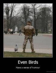Even Birds - Have a sense of humour