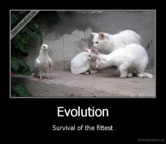 Evolution - Survival of the fittest