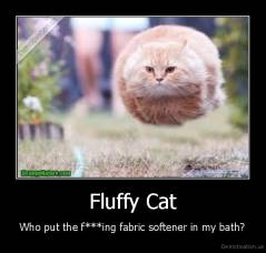 Fluffy Cat - Who put the f***ing fabric softener in my bath?