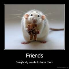 Friends - Everybody wants to have them