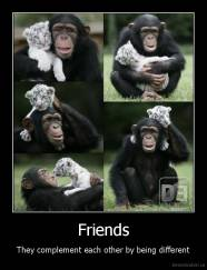 Friends - They complement each other by being different