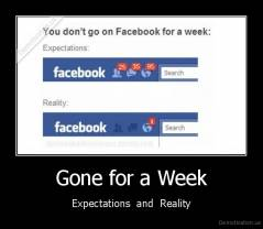 Gone for a Week - Expectations  and  Reality