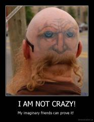 I AM NOT CRAZY! - My imaginary friends can prove it!