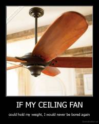 IF MY CEILING FAN - could hold my weight, I would never be bored again