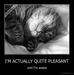 I'M ACTUALLY QUITE PLEASANT - until I'm awake