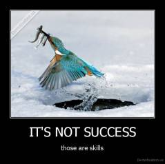 IT'S NOT SUCCESS - those are skills