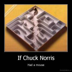 If Chuck Norris - Had a mouse