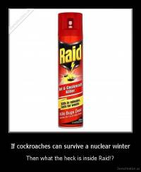 If cockroaches can survive a nuclear winter - Then what the heck is inside Raid!?