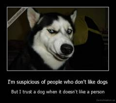 I'm suspicious of people who don't like dogs - But I trust a dog when it doesn't like a person