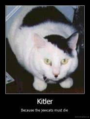 Kitler - Because the jewcats must die